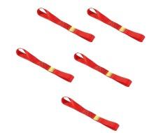 Set van 5 stuks spanbanden 30 cm met dubbele lus / sjorband zonder ijzeren haken
