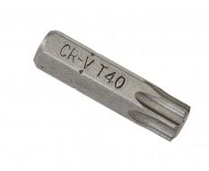 T40 x 25 mm Torx bits - 40 stuks in kunststof box - bitset - Torx bitjes